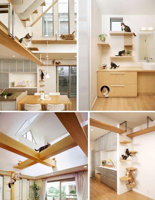 C mo tener una casa apta para gatos la comuna pink - Casas para gatos de madera ...